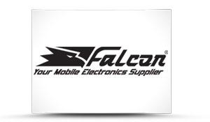 portofoliu-falcon